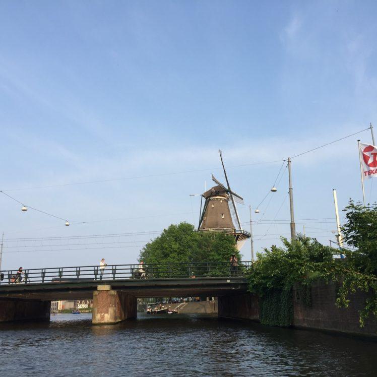 Campiña holandesa