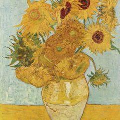 Tour de los museos: Van Gogh y Rijksmuseum