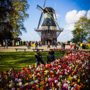 Private Tour to Keukenhof from Amsterdam